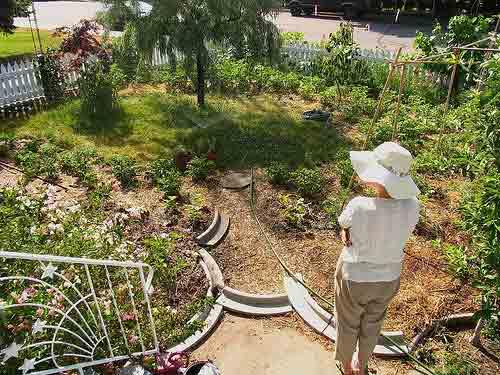 Crea y cuida un jardín