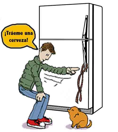 Ordénale que abra la puerta