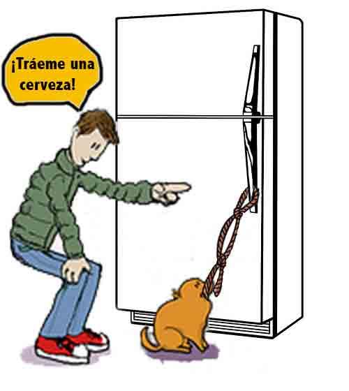 """Anima tu perro a que tire de la cuerda al mismo tiempo que le das la orden """"Tráeme una cerveza"""""""