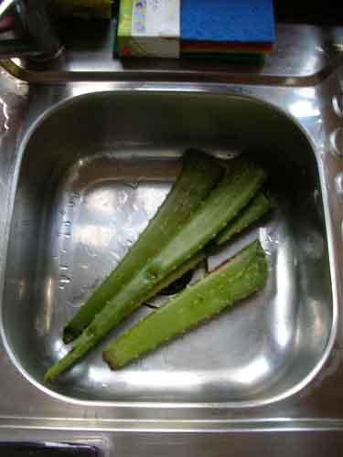 Corta unas hojas de aloe vera y lávalas