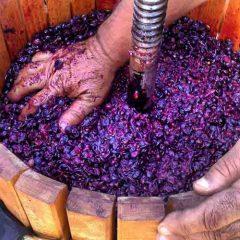Cómo hacer vino casero