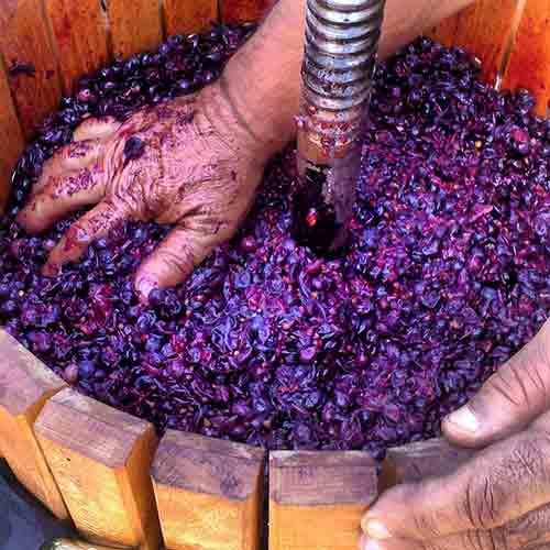 Aplasta las uvas con las manos