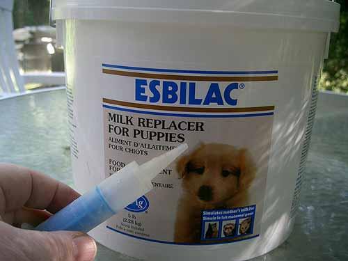 Compra fórmula para cachorro con anticipación