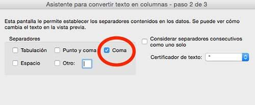 """Selecciona la casilla """"coma"""" y luego haz clic en """"Finalizar"""""""